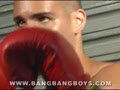 Gay Latino Fighter